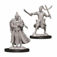 D&D Nolzur's Marvelous Miniatures Elf Male Paladin, Neobojena