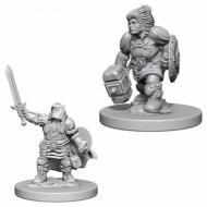 Društvene igre, figurice, minijature, boje za figure, D&D Nolzur's marvelous miniatures - Female Dwarf Paladin
