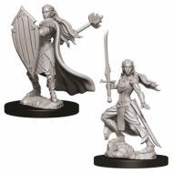 D&D Nolzur's marvelous miniatures - Female Elf Paladin, figure, minijature, dungeons and dragons