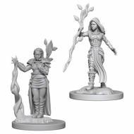 Društvene igre, figurice, minijature, boje za figure, D&D Nolzur's marvelous miniatures - Female Human Druid
