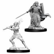Društvene igre, figurice, minijature, boje za figure, D&D Nolzur's marvelous miniatures - Female Human Paladin