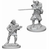 Društvene igre, figurice, minijature, boje za figure, D&D Nolzur's marvelous miniatures - Male Human Bard