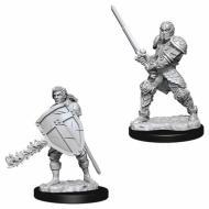Društvene igre, figurice, minijature, boje za figure, D&D Nolzur's marvelous miniatures - Male Human Fighter