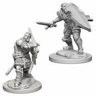 Društvene igre, figurice, minijature, boje za figure, D&D Nolzur's marvelous miniatures - Male Human Paladin