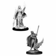 Pathfinder Human Female Oracle , drustvene igre, drustvena igra, D&D, figure, minijature, miniji, figurice, dungeons and dragons, drustvene igre prodaja